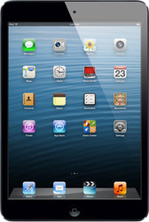 Apple iPad mini 16GB LTE Black