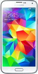 Samsung Galaxy S5 Duos 16GB Shimmery White [G900FD]