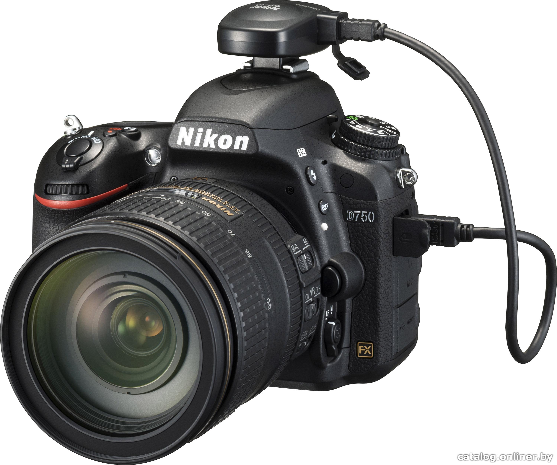 Фотографии с утерянного фотоаппарата 15 фотография