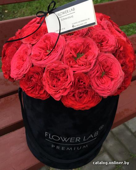 Купить цветы вернадского новый уренгой цветы с доставкой